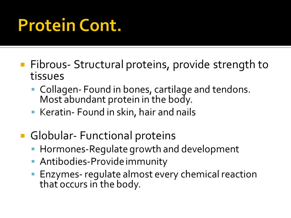  Fibrous- Structural proteins, provide strength to tissues  Collagen- Found in bones, cartilage and tendons.