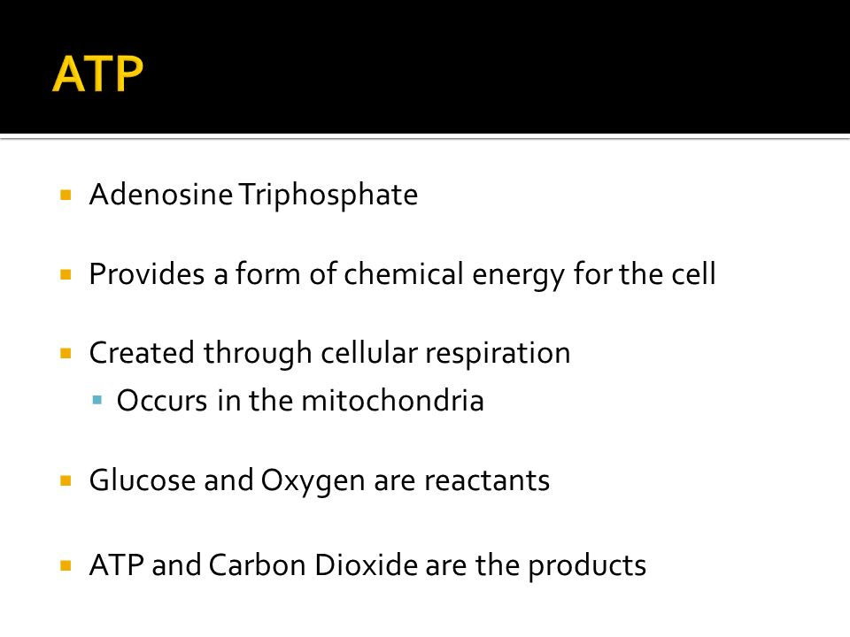  Adenosine Triphosphate  Provides a form of chemical energy for the cell  Created through cellular respiration  Occurs in the mitochondria  Glucose and Oxygen are reactants  ATP and Carbon Dioxide are the products