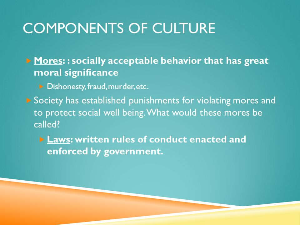 COMPONENTS OF CULTURE  Mores: : socially acceptable behavior that has great moral significance  Dishonesty, fraud, murder, etc.