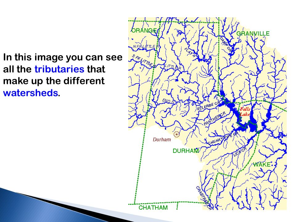 In this image you can see all the tributaries that make up the different watersheds.