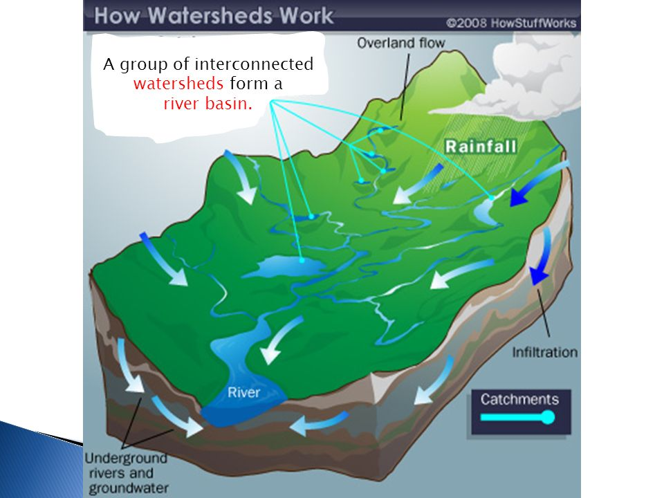 A group of interconnected watersheds form a river basin.
