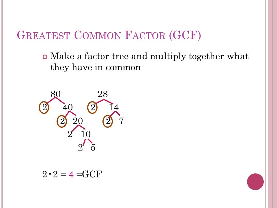 Least Common Denominator Worksheet More information – Finding Common Denominators Worksheet