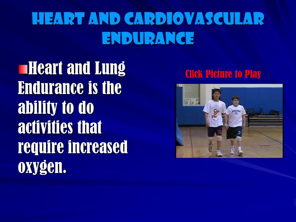 The Components of Physical Fitness are: Heart and Cardiovascular Endurance Muscular Strength Muscular Endurance Flexibility Body Composition Muscular Speed and Power