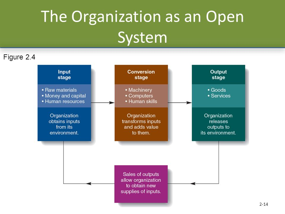 The Organization as an Open System 2-14 Figure 2.4