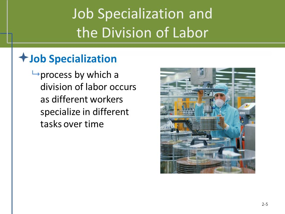 Job Specialization and the Division of Labor  Job Specialization  process by which a division of labor occurs as different workers specialize in dif