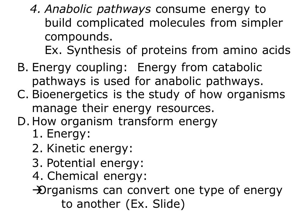 4.Anabolic pathways consume energy to build complicated molecules from simpler compounds.