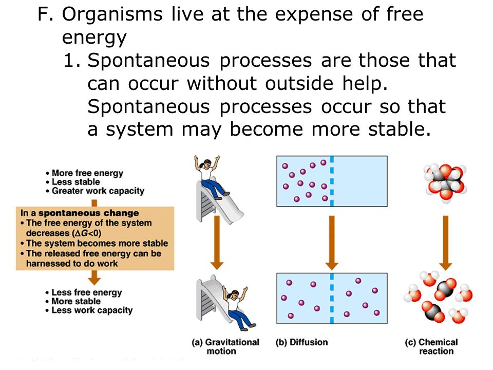 F.Organisms live at the expense of free energy 1.Spontaneous processes are those that can occur without outside help.