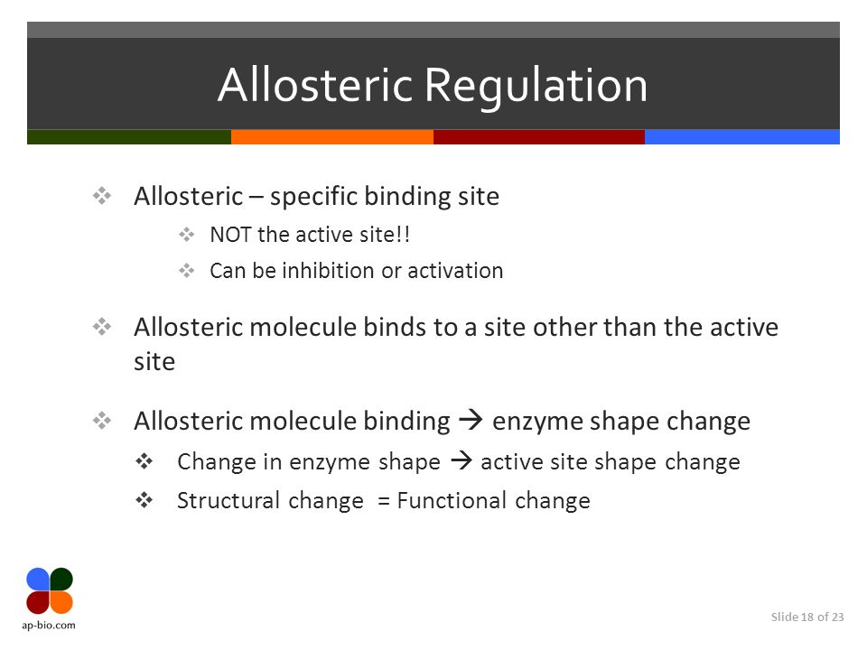 Slide 18 of 23 Allosteric Regulation  Allosteric – specific binding site  NOT the active site!.