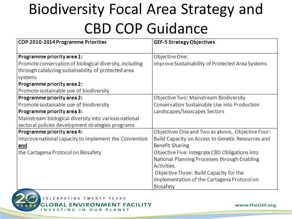 Biodiversity Focal Area Strategy and CBD COP Guidance COP Programme PrioritiesGEF-5 Strategy Objectives Programme priority area 1: Promote conservation of biological diversity, including through catalyzing sustainability of protected area systems Programme priority area 2: Promote sustainable use of biodiversity Objective One: Improve Sustainability of Protected Area Systems Programme priority area 2: Promote sustainable use of biodiversity Programme priority area 3: Mainstream biological diversity into various national sectoral policies development strategies programs Objective Two: Mainstream Biodiversity Conservation Sustainable Use into Production Landscapes/Seascapes Sectors Programme priority area 4: Improve national capacity to implement the Convention and the Cartagena Protocol on Biosafety Objectives One and Two as above, Objective Four: Build Capacity on Access to Genetic Resources and Benefit Sharing Objective Five: Integrate CBD Obligations into National Planning Processes through Enabling Activities.