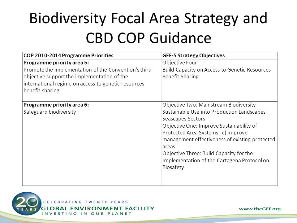 Biodiversity Focal Area Strategy and CBD COP Guidance COP Programme PrioritiesGEF-5 Strategy Objectives Programme priority area 5: Promote the implementation of the Convention's third objective support the implementation of the international regime on access to genetic resources benefit ‑ sharing Objective Four: Build Capacity on Access to Genetic Resources Benefit Sharing Programme priority area 6: Safeguard biodiversity Objective Two: Mainstream Biodiversity Sustainable Use into Production Landscapes Seascapes Sectors Objective One: Improve Sustainability of Protected Area Systems: c) Improve management effectiveness of existing protected areas Objective Three: Build Capacity for the Implementation of the Cartagena Protocol on Biosafety