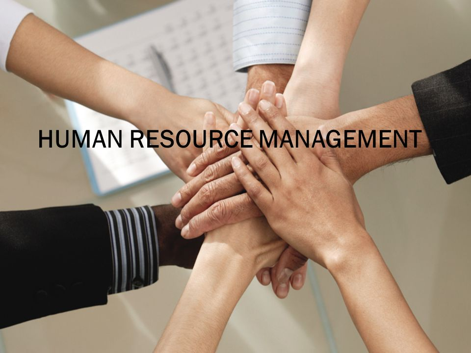 Image result for Human Resource Management Is Vital To An Organization's Success