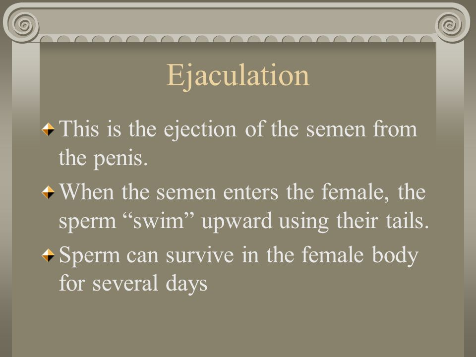 "Ejaculation This is the ejection of the semen from the penis. When the semen enters the female, the sperm ""swim"" upward using their tails. Sperm can s"