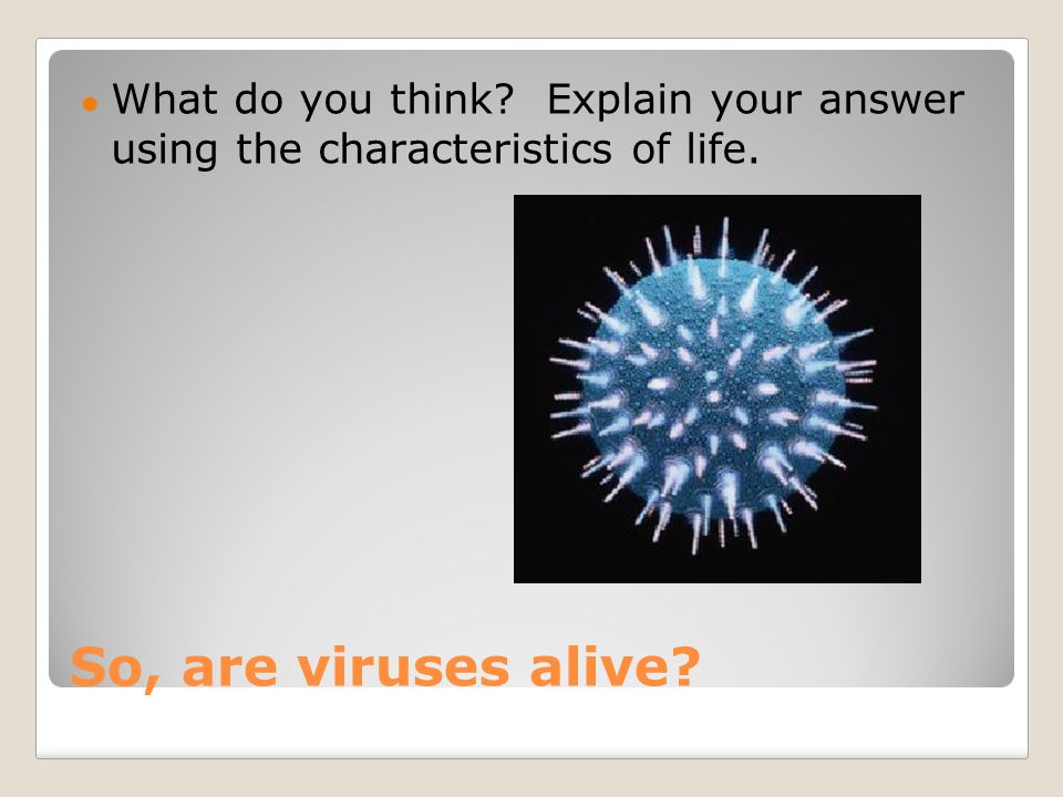 So, are viruses alive ● What do you think Explain your answer using the characteristics of life.