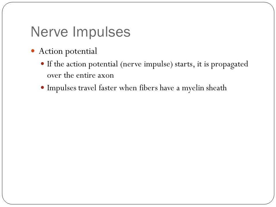 Nerve Impulses Action potential If the action potential (nerve impulse) starts, it is propagated over the entire axon Impulses travel faster when fibers have a myelin sheath
