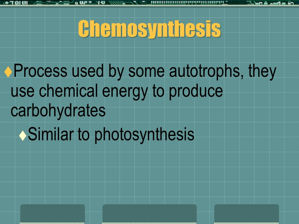 Photosynthesis  Chemical rxn that converts carbon dioxide and water into oxygen and sugars  6CO 2 + 6H 2 O C 6 H 12 O 6 + 6O 2 carbon water light sugar oxygen dioxideenergy