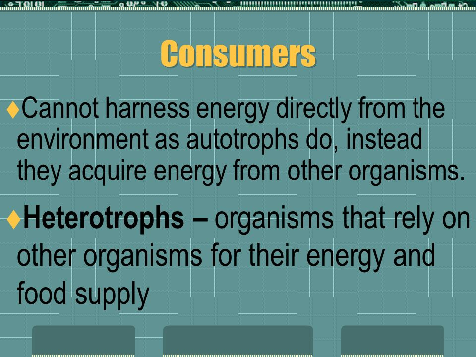 Chemosynthesis  Process used by some autotrophs, they use chemical energy to produce carbohydrates  Similar to photosynthesis