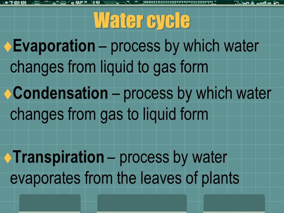 3-3 Cycles  Unlike energy, matter is recycled within the ecosystem  Biogeochemical cycles – show how elements, chemicals, and other forms of matter are passed from from one organism to another in the ecosystem.