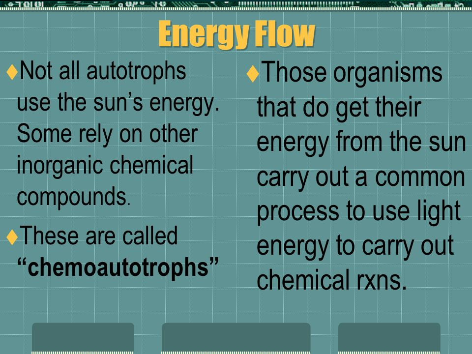 3-2 Energy Flow  The main energy source for life on Earth is the sun.