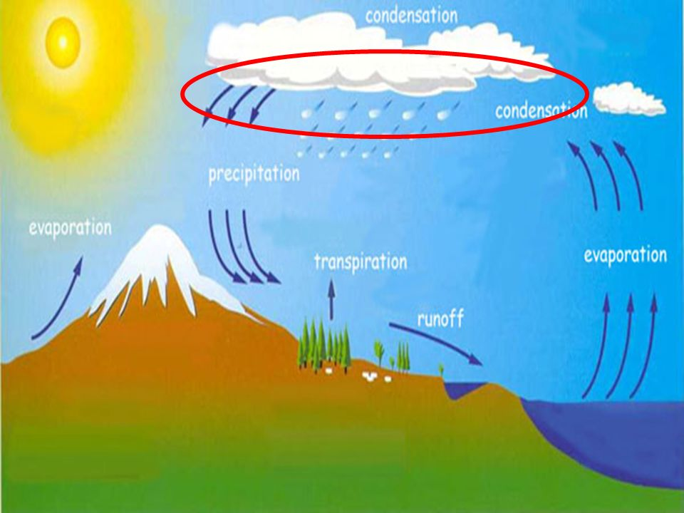 When a large amount of water vapor condenses, it results in the formation of clouds.