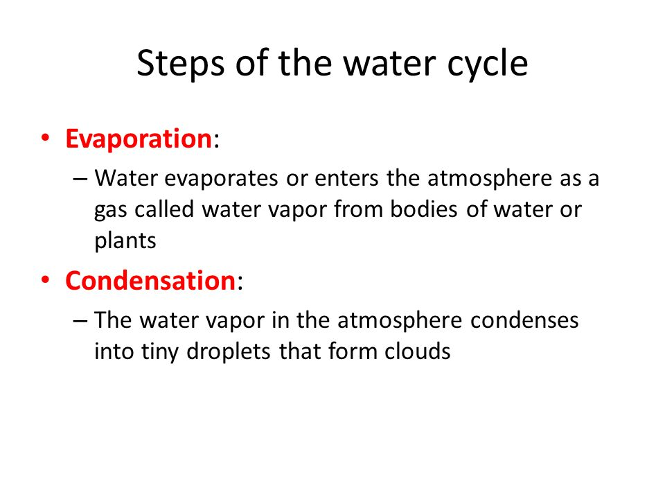 Steps of the water cycle Evaporation: – Water evaporates or enters the atmosphere as a gas called water vapor from bodies of water or plants Condensation: – The water vapor in the atmosphere condenses into tiny droplets that form clouds