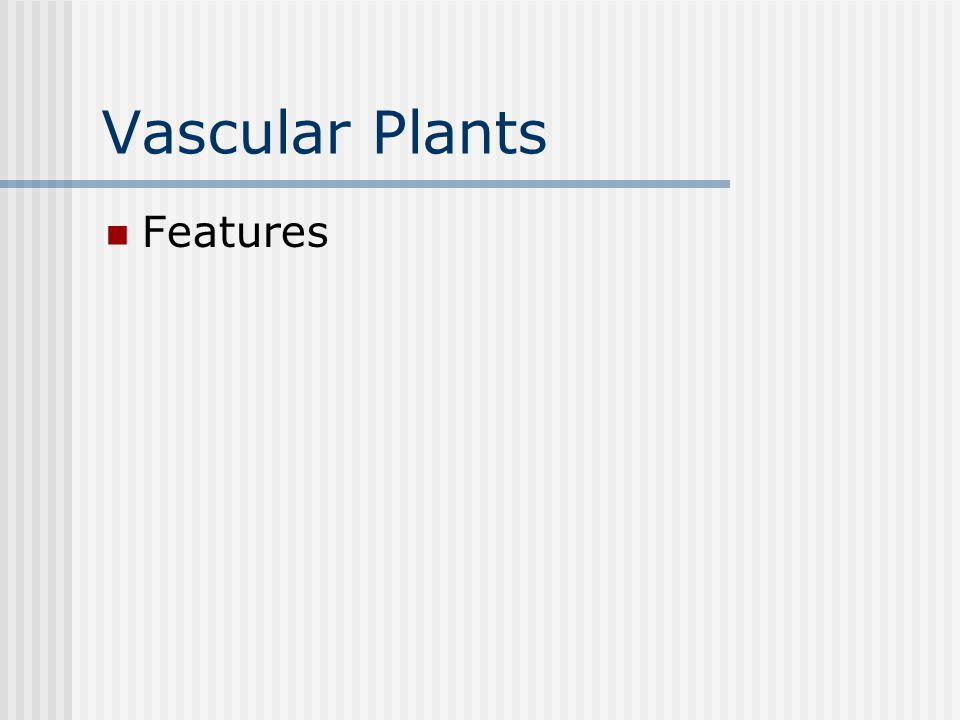 Vascular Plants Features