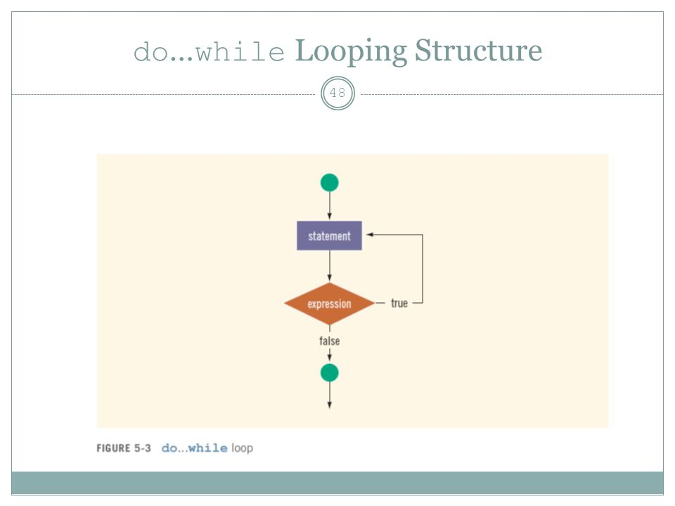 do … while Looping Structure 48