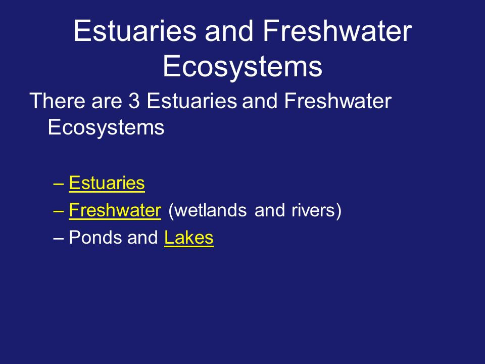 Estuaries and Freshwater Ecosystems There are 3 Estuaries and Freshwater Ecosystems –Estuaries –Freshwater (wetlands and rivers) –Ponds and Lakes