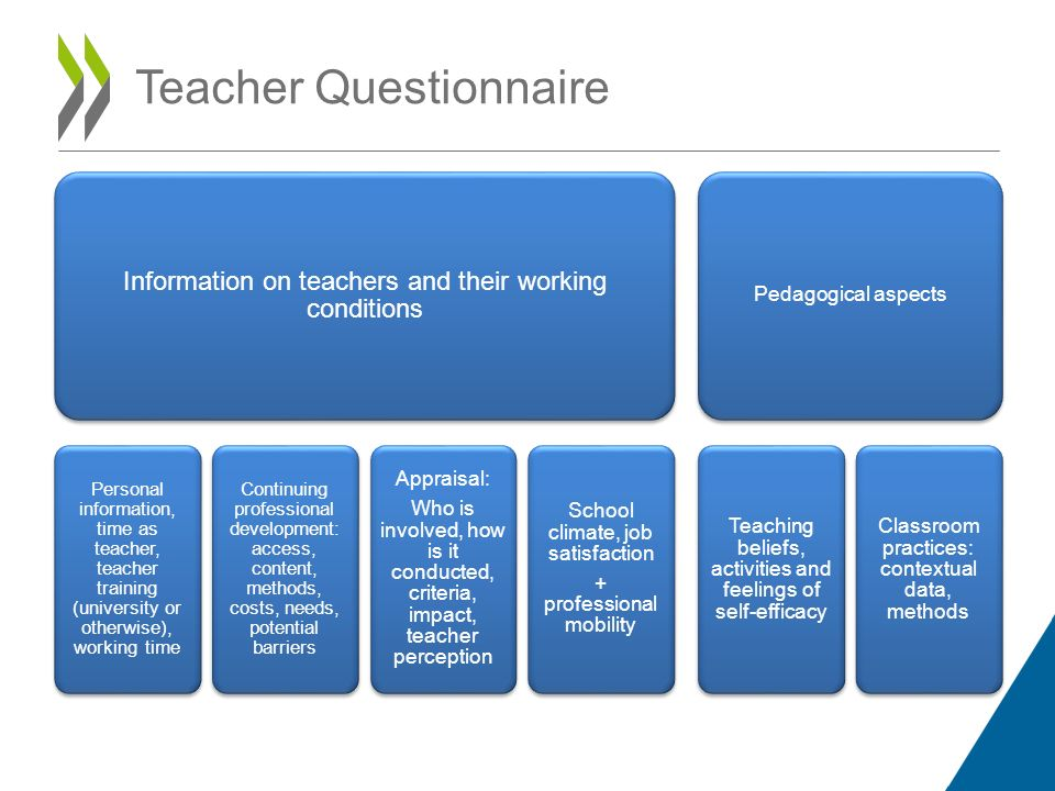 Teacher Questionnaire Information on teachers and their working conditions Personal information, time as teacher, teacher training (university or otherwise), working time Continuing professional development: access, content, methods, costs, needs, potential barriers Appraisal: Who is involved, how is it conducted, criteria, impact, teacher perception School climate, job satisfaction + professional mobility Pedagogical aspects Teaching beliefs, activities and feelings of self-efficacy Classroom practices: contextual data, methods
