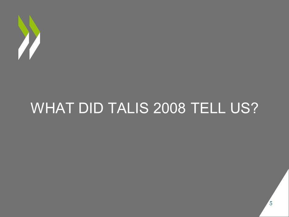 WHAT DID TALIS 2008 TELL US 5