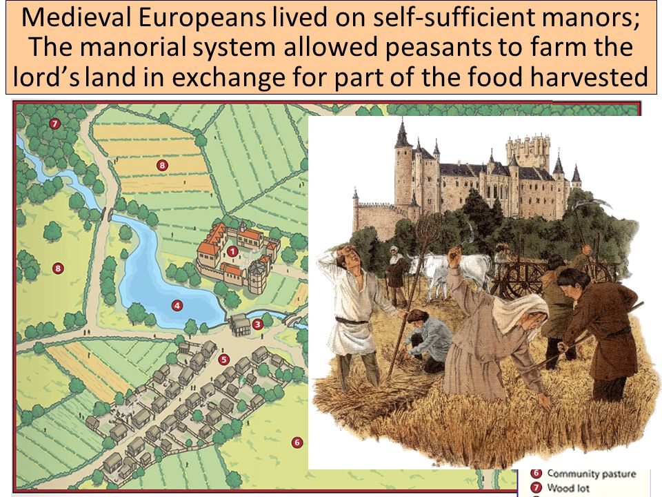 Western Europe in the Middle Ages Medieval Europeans lived on self-sufficient manors; The manorial system allowed peasants to farm the lord's land in exchange for part of the food harvested