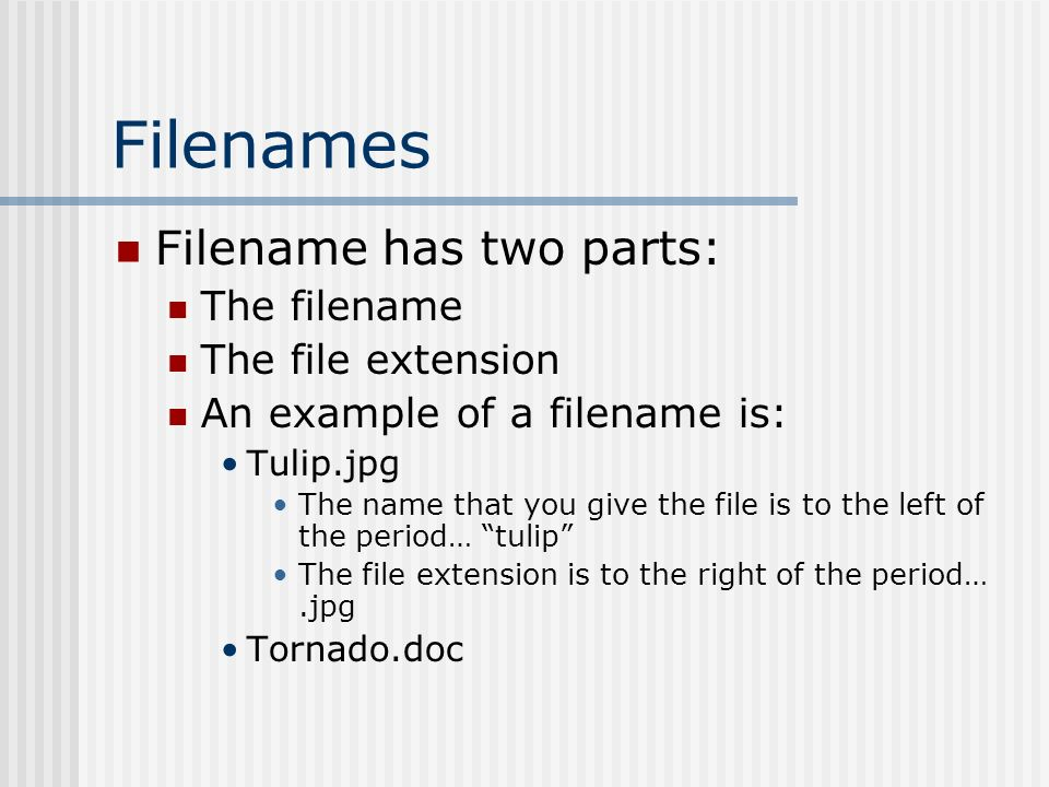 Filenames Filename has two parts: The filename The file extension An example of a filename is: Tulip.jpg The name that you give the file is to the left of the period… tulip The file extension is to the right of the period….jpg Tornado.doc