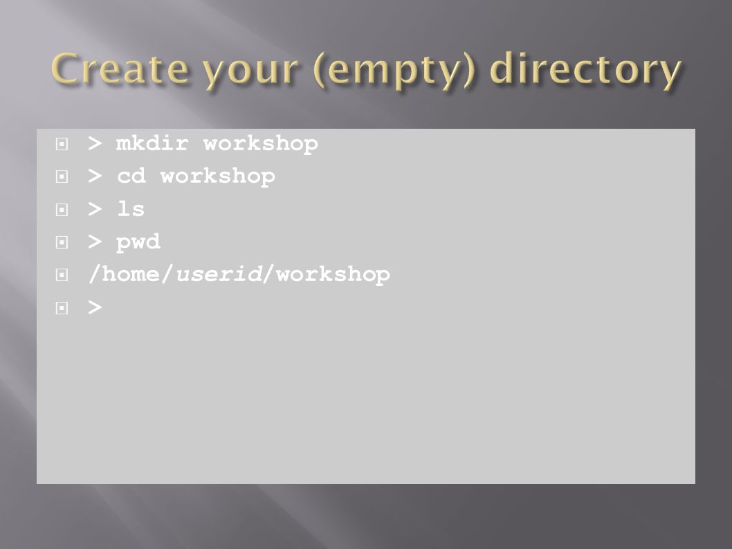  > mkdir workshop  > cd workshop  > ls  > pwd  /home/userid/workshop  >