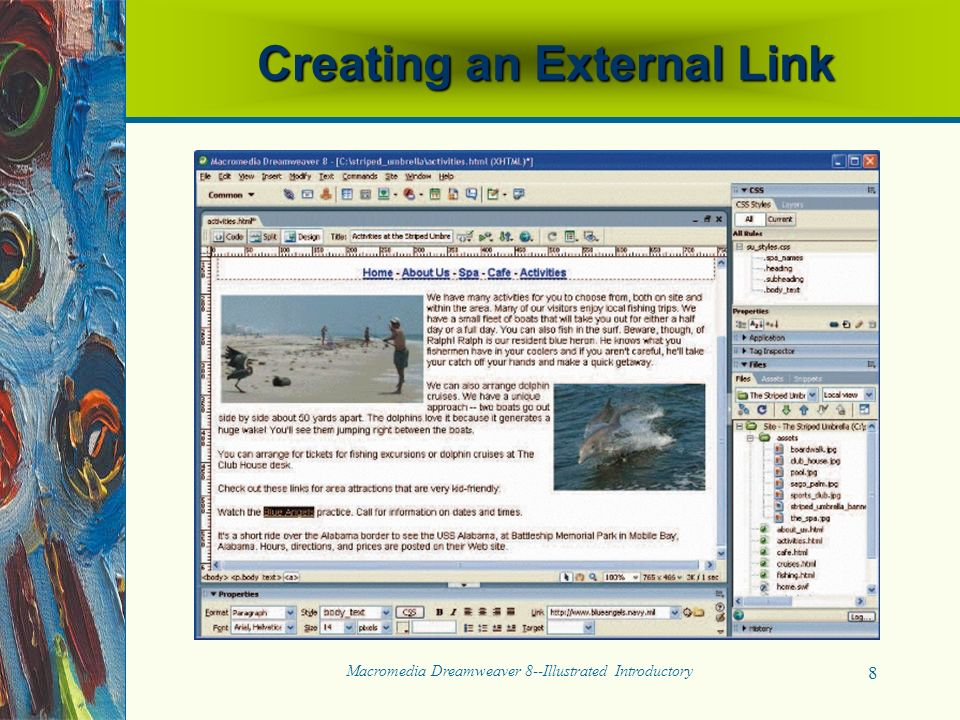 Macromedia Dreamweaver 8--Illustrated Introductory 8 Creating an External Link