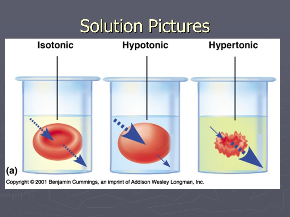 Solution Pictures