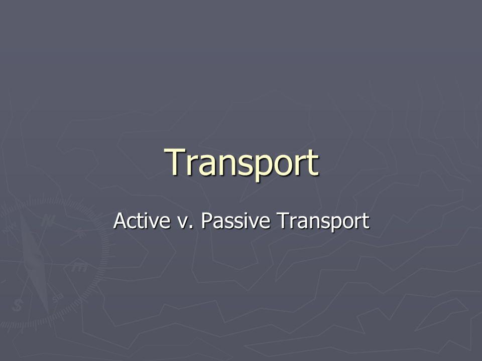 Transport Active v. Passive Transport
