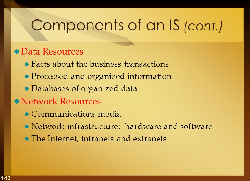 1-13 Components of an IS (cont.) Data Resources Facts about the business transactions Processed and organized information Databases of organized data Network Resources Communications media Network infrastructure: hardware and software The Internet, intranets and extranets