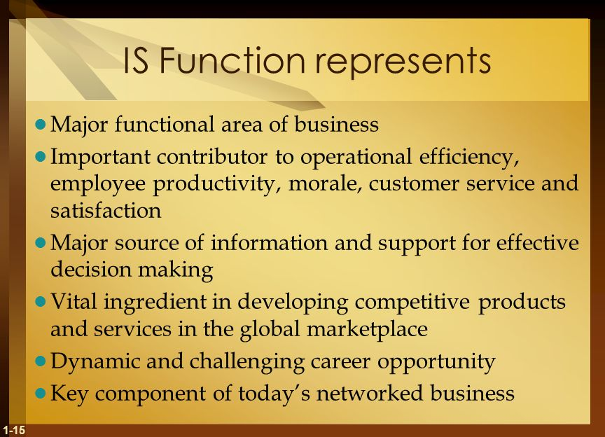 1-15 IS Function represents Major functional area of business Important contributor to operational efficiency, employee productivity, morale, customer service and satisfaction Major source of information and support for effective decision making Vital ingredient in developing competitive products and services in the global marketplace Dynamic and challenging career opportunity Key component of today's networked business