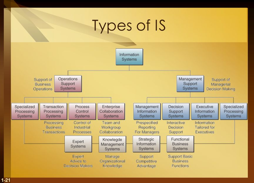 1-21 Types of IS