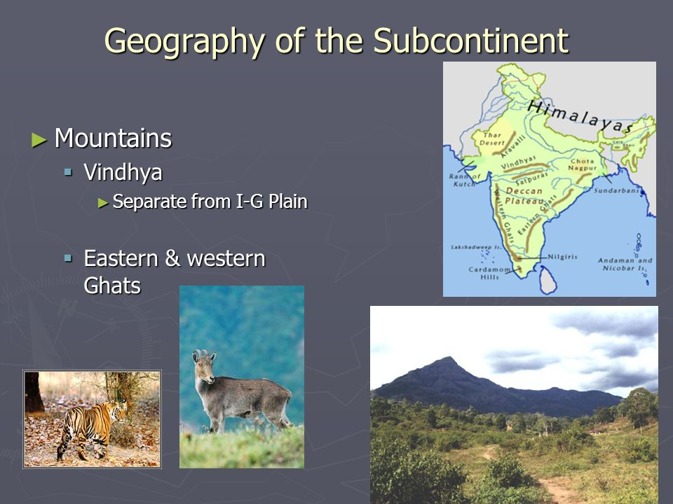 ► Mountains  Vindhya ► Separate from I-G Plain  Eastern & western Ghats Geography of the Subcontinent