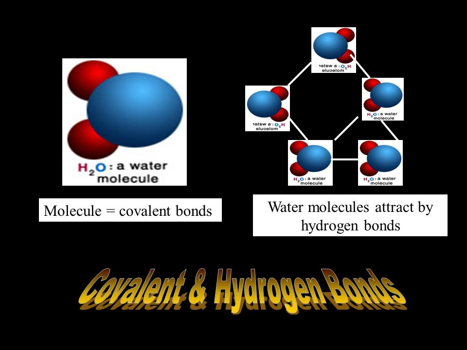 Types of Chemical Bonding Covalent Bonding – Atoms share electrons.