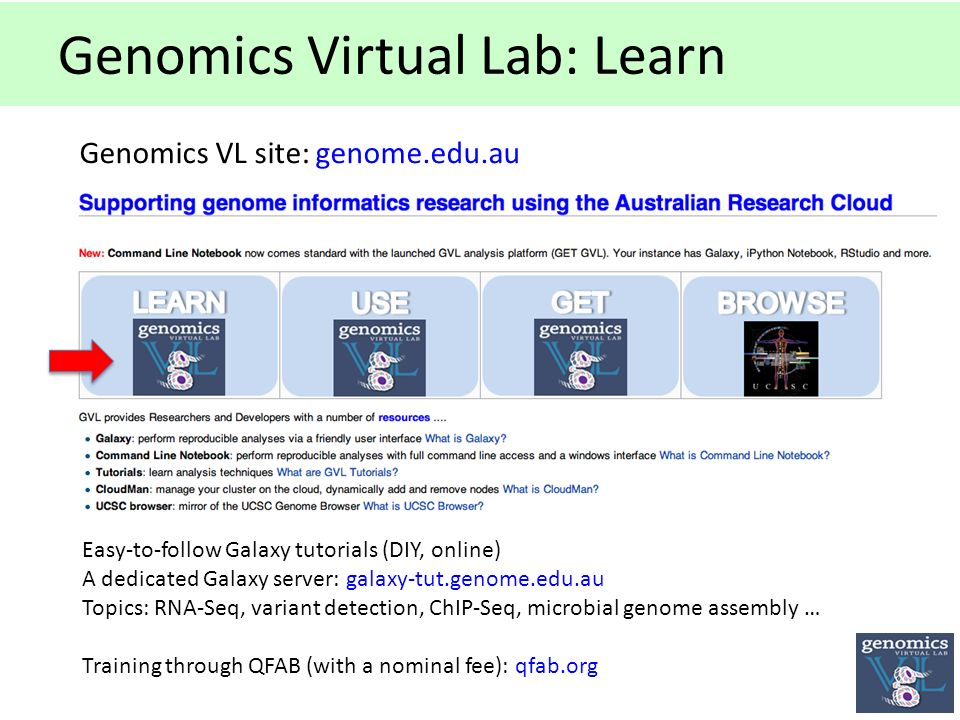 Genomics Virtual Lab: Learn Genomics VL site: genome.edu.au Easy-to-follow Galaxy tutorials (DIY, online) A dedicated Galaxy server: galaxy-tut.genome.edu.au Topics: RNA-Seq, variant detection, ChIP-Seq, microbial genome assembly … Training through QFAB (with a nominal fee): qfab.org