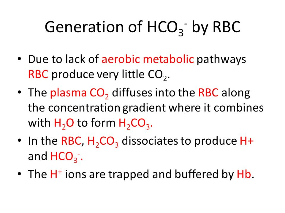 Generation of HCO 3 - by RBC Due to lack of aerobic metabolic pathways RBC produce very little CO 2.