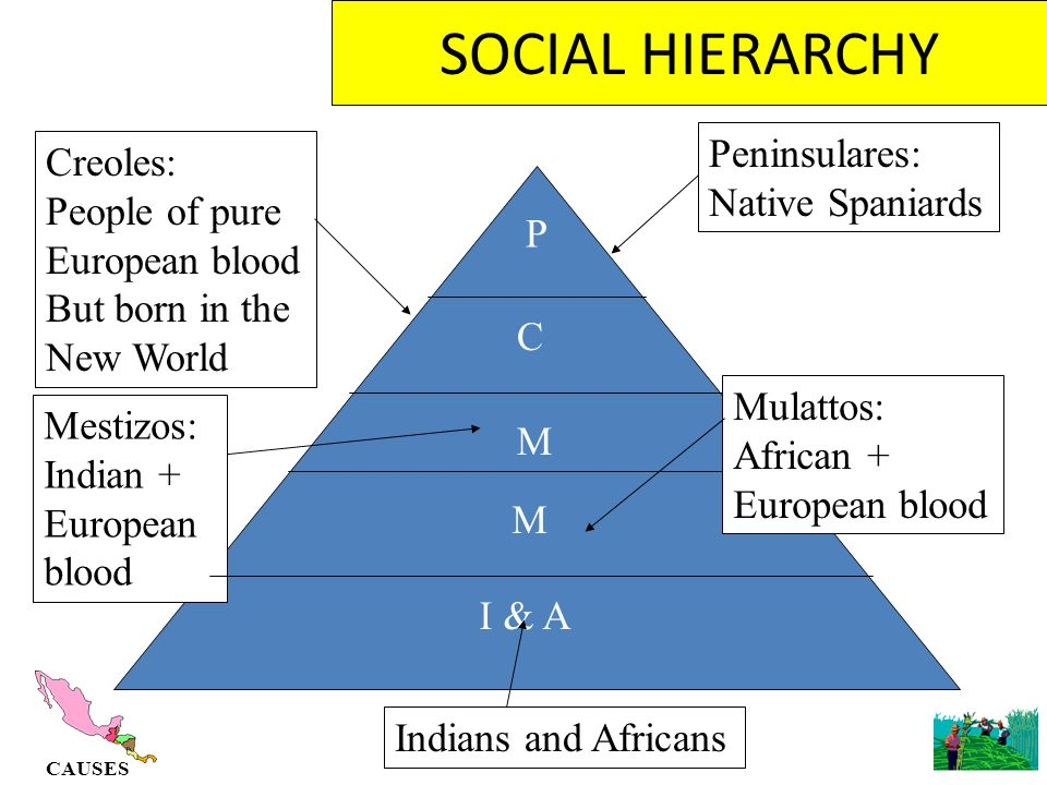 social hierarchy mice and men What does the social and historical context tell us about steinbeck's point of view steinbeck was concerned with the horrors of biblical symbols in of mice and men.