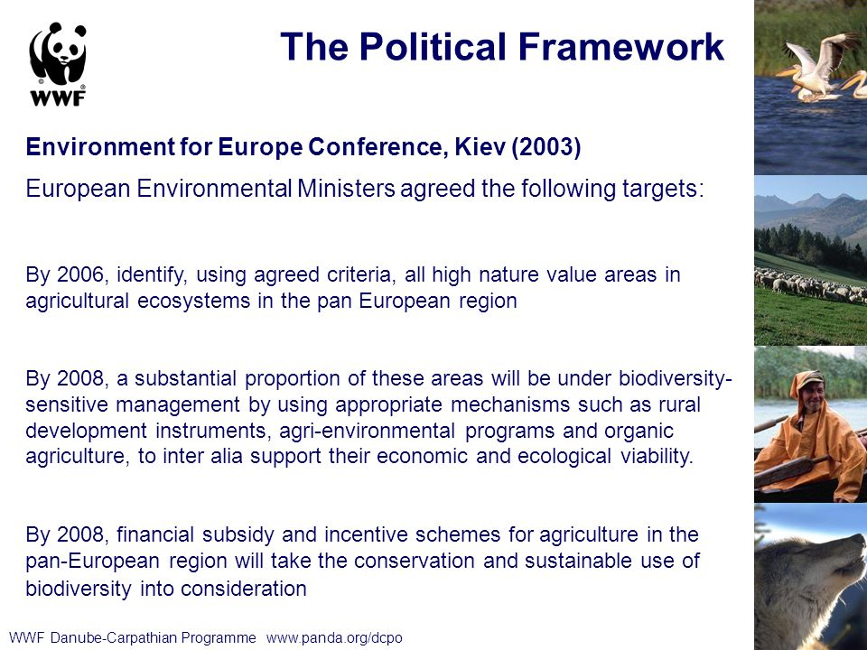 WWF Danube-Carpathian Programme   The Political Framework Environment for Europe Conference, Kiev (2003) European Environmental Ministers agreed the following targets: By 2006, identify, using agreed criteria, all high nature value areas in agricultural ecosystems in the pan European region By 2008, a substantial proportion of these areas will be under biodiversity- sensitive management by using appropriate mechanisms such as rural development instruments, agri-environmental programs and organic agriculture, to inter alia support their economic and ecological viability.
