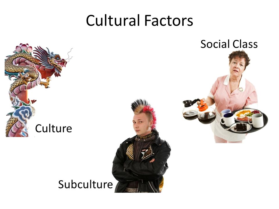 Cultural Factors Culture Subculture Social Class