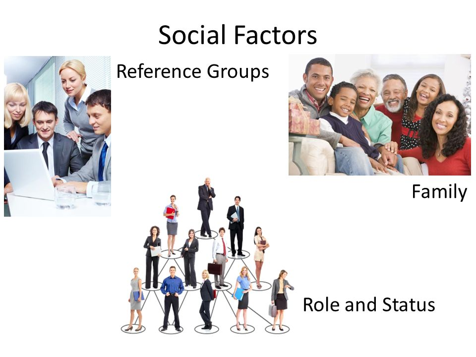 Social Factors Reference Groups Family Role and Status