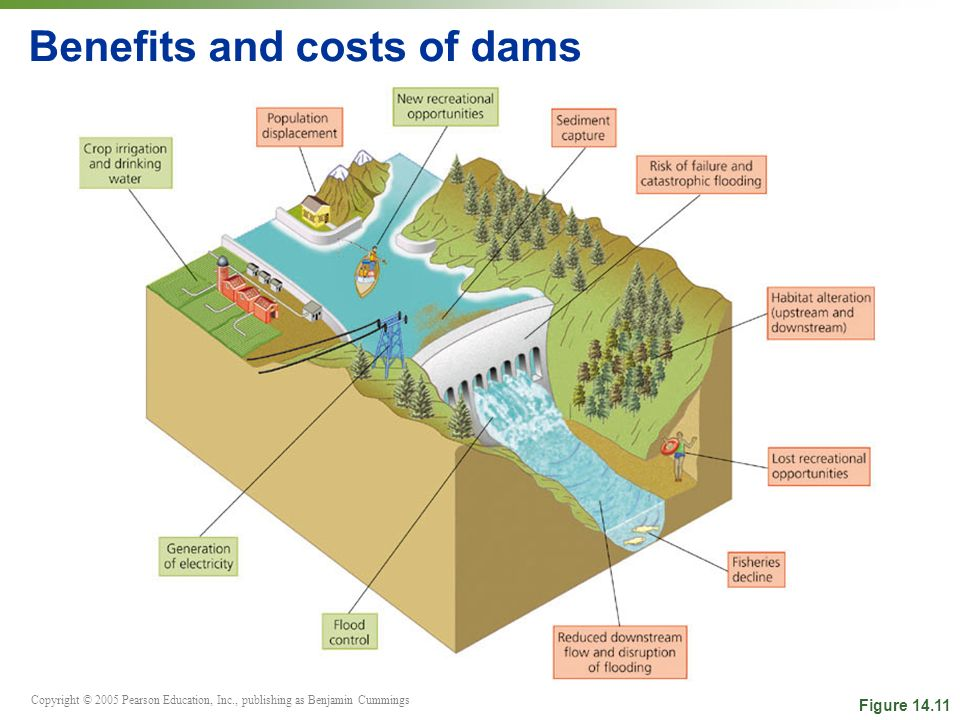 Copyright © 2005 Pearson Education, Inc., publishing as Benjamin Cummings Benefits and costs of dams Figure 14.11