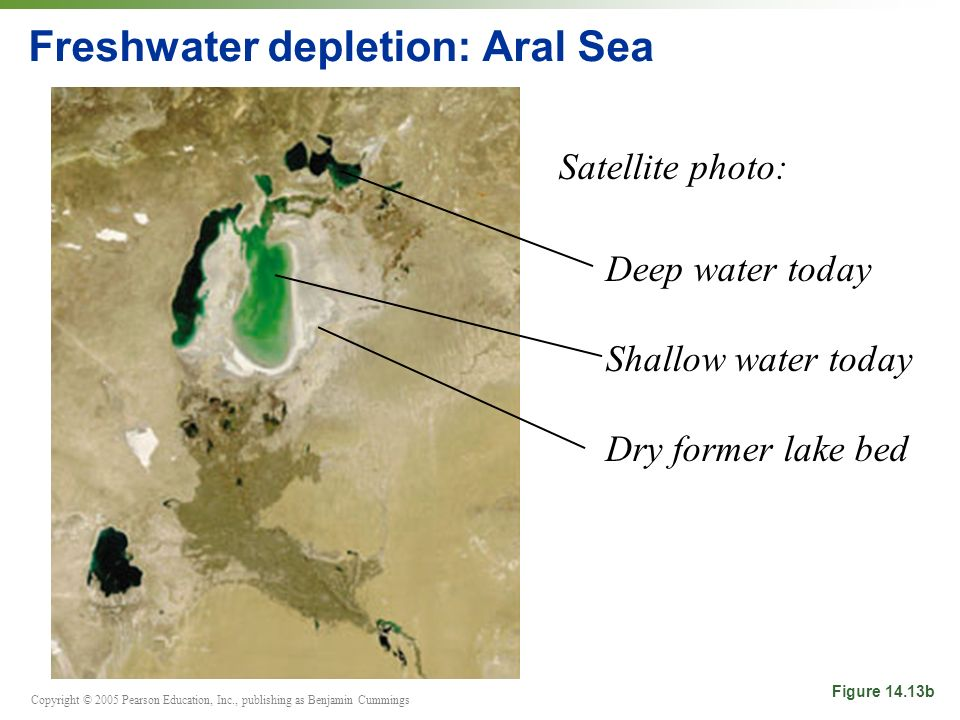 Copyright © 2005 Pearson Education, Inc., publishing as Benjamin Cummings Freshwater depletion: Aral Sea Satellite photo: Deep water today Shallow water today Dry former lake bed Figure 14.13b