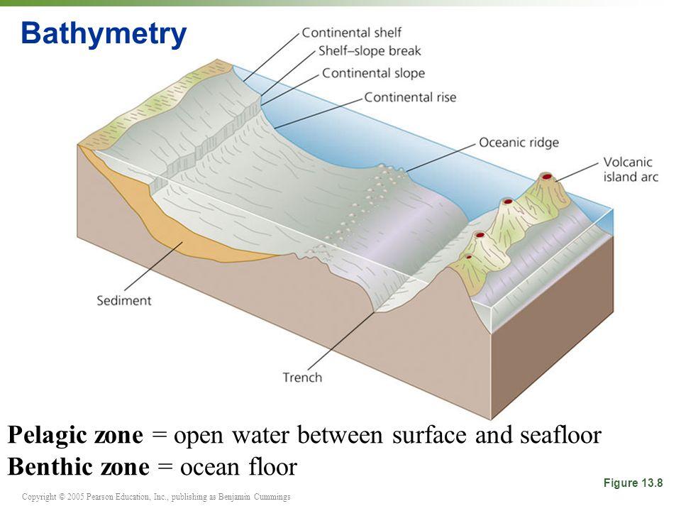 Copyright © 2005 Pearson Education, Inc., publishing as Benjamin Cummings Bathymetry Figure 13.8 Pelagic zone = open water between surface and seafloor Benthic zone = ocean floor