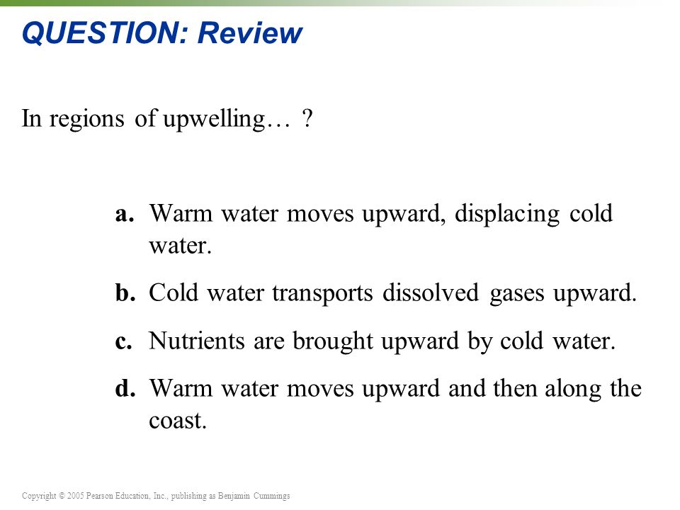 Copyright © 2005 Pearson Education, Inc., publishing as Benjamin Cummings QUESTION: Review In regions of upwelling… .
